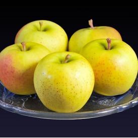 リンゴ 林檎 りんご 青森県産 アンビシャス 約3kg (12~15玉) 特Aランク 産地箱 冷蔵 送料無料