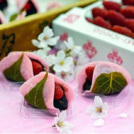 ミガキイチゴを使った「いちご桜餅」 4個 ※冷蔵 【母の日ギフト】カーネーション(造花)・メッセージカード付 送料無料