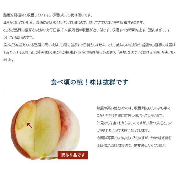 山梨県産 春日居共選所の訳あり「熟れ桃」 約1.3kg×2箱 ※常温 送料無料05