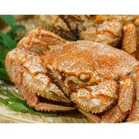 北海道産 ちょっと小ぶりな『毛蟹』 2尾セット 合計 約600g ボイル済み 堅蟹 ※冷凍 送料無料