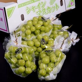 JAふくしま未来 『シャインマスカット』 福島県産 約5kg(6~8房)※常温 送料無料