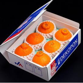 熊本県産 デコポン 優品以上 約1.8kg 4~6玉 化粧箱 ※常温 送料無料