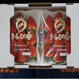 いちご 静岡県産 「きらぴ香」 約300g×4P  ※冷蔵