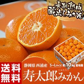 静岡県産 寿太郎みかん S~Lサイズ 約10kg 産地箱 ※常温 送料無料