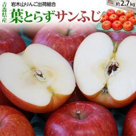 送料無料 青森県産 岩木山りんご生産出荷組合 葉とらずサンふじ 糖度13.5度以上 約2.7kg (目安として7~13玉) ※常温
