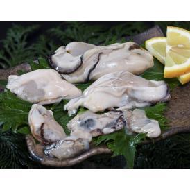 加熱調理用『サイズ不揃い剥き牡蠣』広島県産 NET850g (総重量約1kg) ※冷凍 送料無料
