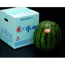 神奈川県 三浦のスイカ 最大級5Lサイズ 1玉 約10kg ※冷蔵