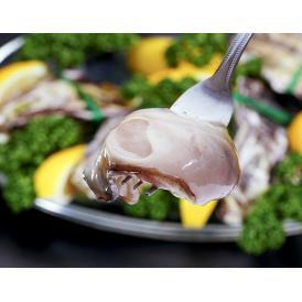 【賞味間近最短2021年11月】瀬戸内海産 『殻付き牡蠣』 生食用 小粒Sサイズ 1袋 12個入り (1個:55~64g) ※冷凍