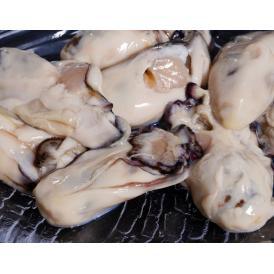広島県産 生冷凍 剥き牡蠣 2Lサイズ 総重量1kg(net850g) バラ凍結・加熱用 ※冷凍
