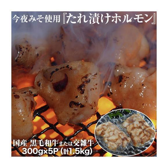 今夜みそ使用『たれ漬けホルモン』黒毛和牛または交雑牛 国産 300g×5P(計1.5kg) ※冷凍 送料無料01