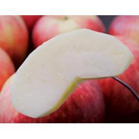 糖度11.5度以上!の珍しい林檎