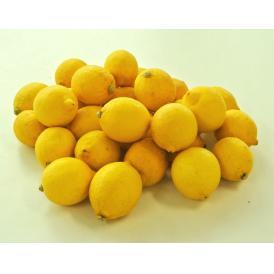 【相場下落】チリ産 レモン 約3kg (目安18~35玉) ※常温 送料無料
