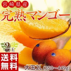 マンゴー 宮崎県産 完熟マンゴー 2Lサイズ 2玉(1玉あたり350~449g) 常温 送料無料 簡易包装