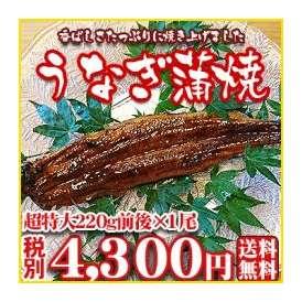【うなぎ01】日本が誇る三河産の厳選素材を香ばしさたっぷりに焼き上げました! 超特大220g前後×1尾【愛知三河産】