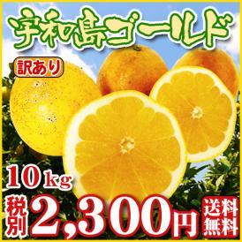 【Wゴ10】宇和島ゴールド10kg(訳有り・サイズ込)厳選農園・ワケあり)【基本送料無料】美生柑