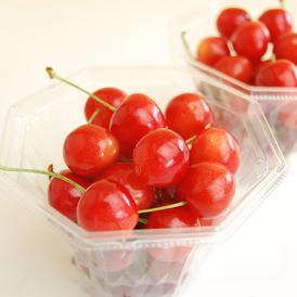人気上昇中の品種です!酸味が穏やかで甘みがあり、実に張りがあるのが特徴の紅秀峰