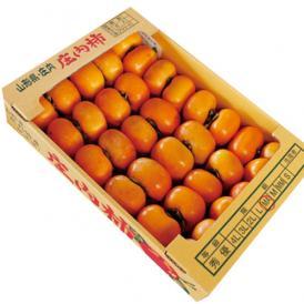 山形県産庄内柿5kg