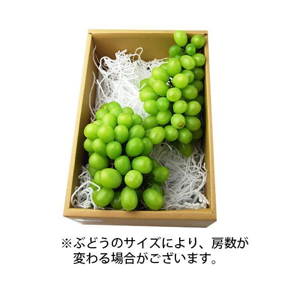 《訳あり》山形県産ぶどう シャインマスカット1.5kg前後(2~3房) 03