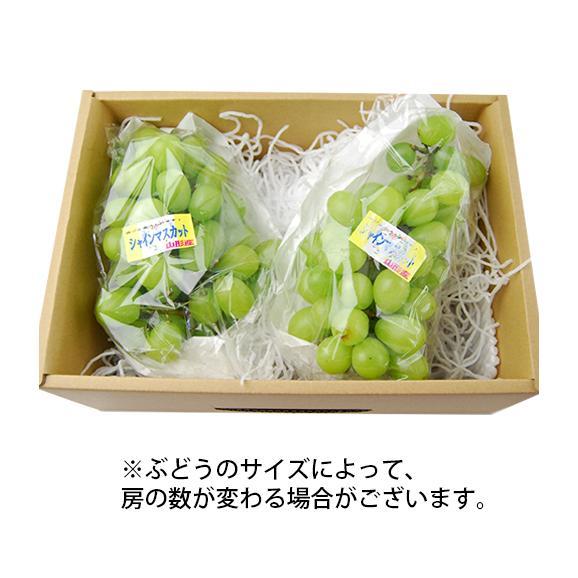 《訳あり》山形県産ぶどう シャインマスカット1.5kg前後(2~3房) 04