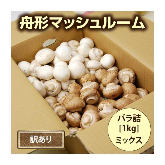 【訳あり】舟形マッシュルーム[バラ詰1kg]箱入03