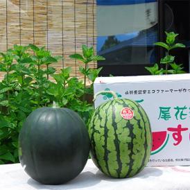 尾花沢すいか小玉2玉(緑・黒おまかせ)