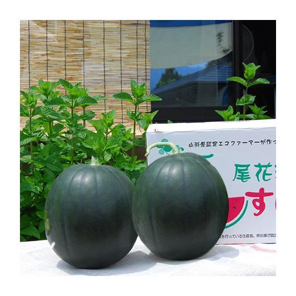 尾花沢すいか小玉2玉(緑・黒おまかせ)02