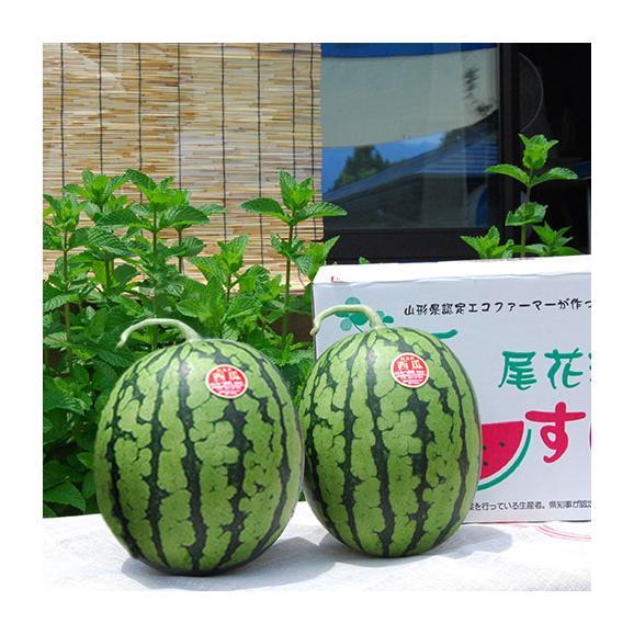 尾花沢すいか小玉2玉(緑・黒おまかせ)03