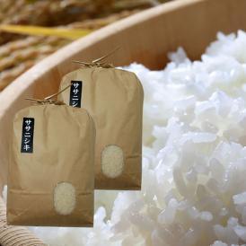 山形県産ササニシキ10kg【精米/うまいず極上米】