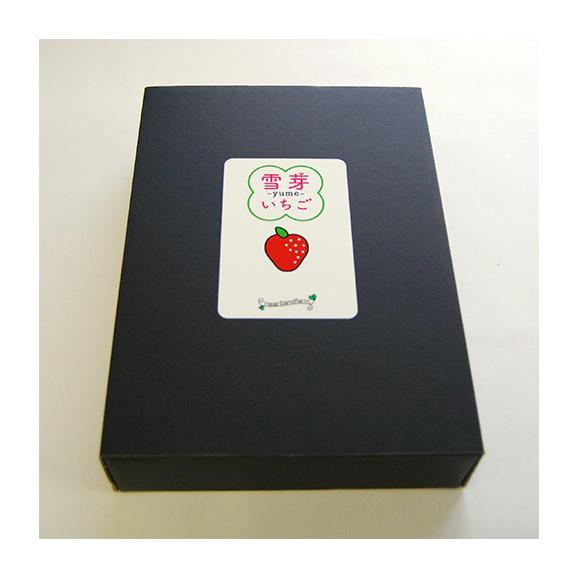 雪芽いちご(Lサイズ×15粒)[ギフトBOX入]<1月上旬頃より発送>箱入03
