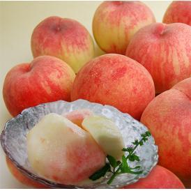 山形産の白桃が《訳あり》のためお買得です!