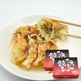 ひろしの餃子/選べる2種類セット(20個×2箱)[箱入]