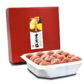 【送料無料】紀州南高梅特大5Lサイズ使用 「豊実梅」