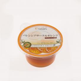 バレンシアサークルオレンジ