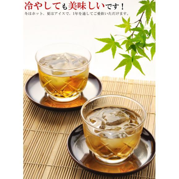ゴクゴク飲める♪国産 杜仲茶 ティーバッグ 1袋 40袋(20袋×2個) 水出し もできます【送料無料】【とちゅう茶】【健康茶】※代金引換不可04