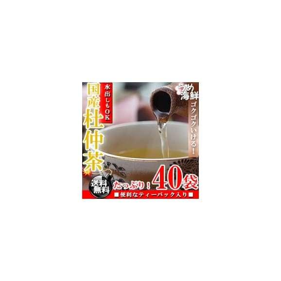 ゴクゴク飲める♪国産 杜仲茶 ティーバッグ 1袋 40袋(20袋×2個) 水出し もできます【送料無料】【とちゅう茶】【健康茶】※代金引換不可01