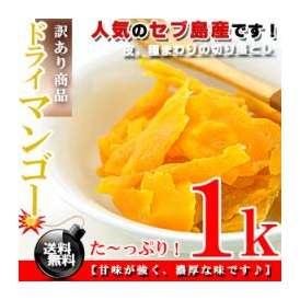 セブ島 ドライマンゴー たっぷり 1kg(500g×2個)【訳あり】【送料無料】※代金引換不可 F