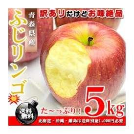 青森県産 ふじりんご お徳用 5kg [訳あり][送料無料]※代金引換不可 F