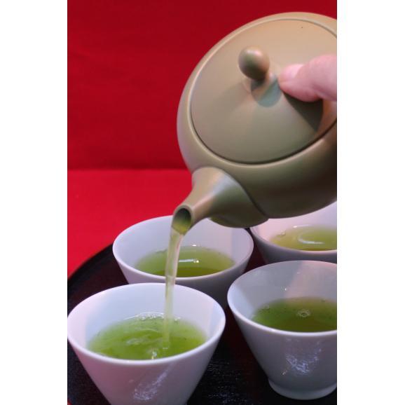 世界農業遺産 掛川茶03