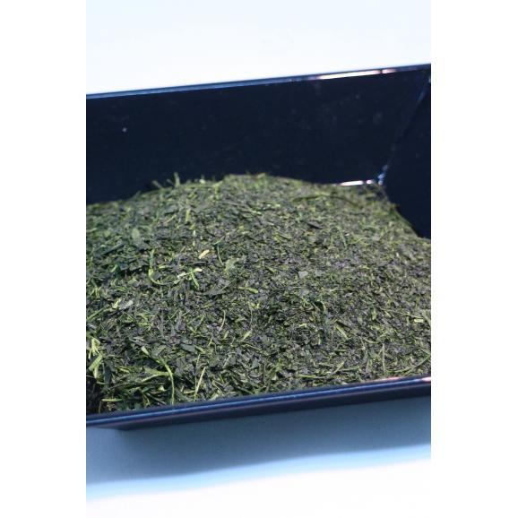 世界農業遺産 掛川茶04