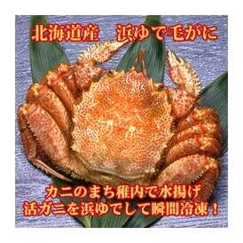毛がに 北海道産 浜ゆで(冷凍) 430g×1尾