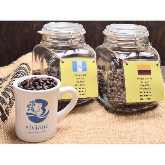 お楽しみ 今月のスタンダードコーヒー豆400グラム01
