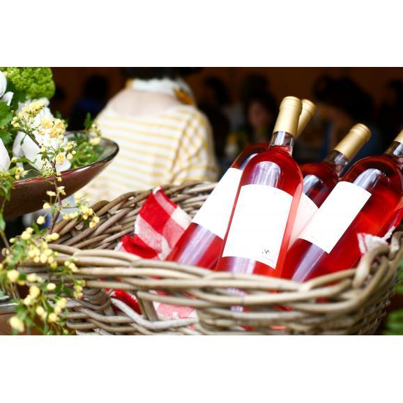 WAIMARAMA vin rose 2016 750ml 【スクリュー】03