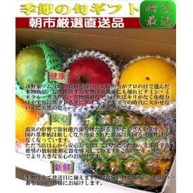 フルーツギフト 果物ギフト 果物 ギフト フルーツ 盛り合わせ 詰め合わせ お試し 5~6種 楽々取っ手付き