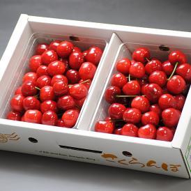 産地直送 紅さやか さくらんぼ 約1kg Lサイズ 山形県産 秀品 露地栽培 贈答品 酸味と高い糖度が魅力の爽やかな味!鮮度抜群のギフトフルーツ