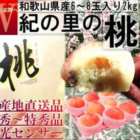 産地直送 紀の里桃 約2kg 6~8玉 贈答規格 和歌山県産 特秀品~秀品 糖度センサーで厳選した抜群の味!ギフト最適な旬のフルーツ