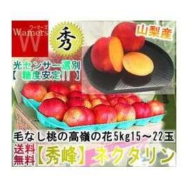 ネクタリン 秀峰 桃 もも モモ 毛のない桃 大容量 5kg 長野・山梨・産地リレー
