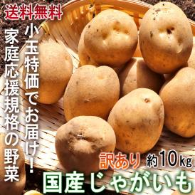 ◆小玉特価! 国産じゃがいも 約10kg 2S~Mサイズ 訳あり 日本全国より旬のジャガイモをお届け! 産地厳選