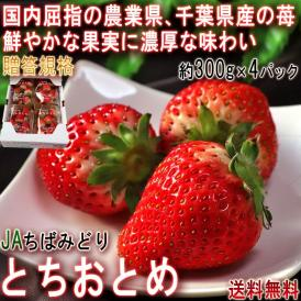 とちおとめ いちご 約300g×4パック 千葉県産 秀品 JAちばみどり 贈答規格 全国有数の農業県で厳選した高品質なギフト苺!鮮やかな果実に濃厚な味わい