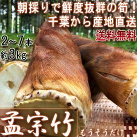 産地直送 孟宗筍 もうそうだけ 生たけのこ 約3kg 2~7本 千葉県産 無農薬栽培の竹の子!朝一番で収穫した新鮮な筍を米ぬか同梱で直送