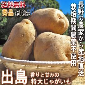 産地直送 出島 じゃがいも 約10kg 秀品 栽培期間農薬無使用 長野県産 贈答可能 香りと甘み豊富な特大ジャガイモ!